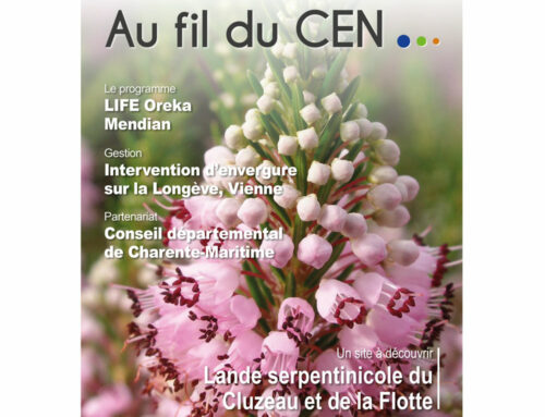 Au fil du CEN, bulletin d'informations avril 2021