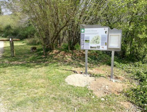 Travaux – Vallée de la Renaudie (Charente)