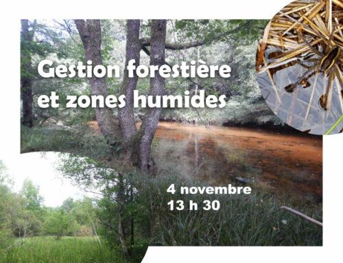 Jeudi 04/11/2021 de 13h30 à 17h30 – Chez un adhérent du Réseau Zones Humides (Nedde, 87)